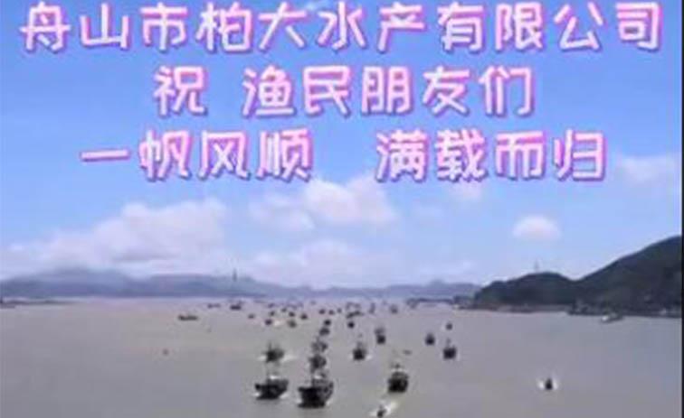 开渔季视频